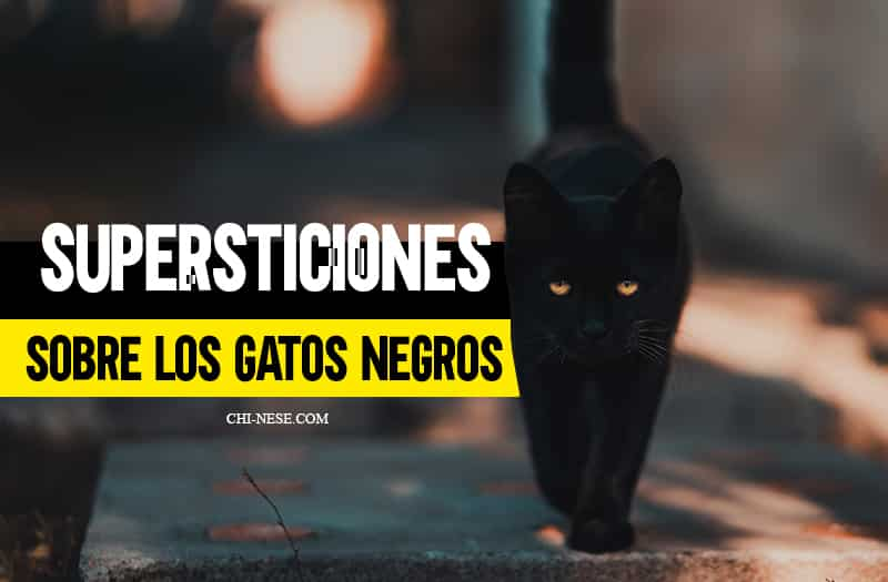 Supersticiones sobre los gatos negros