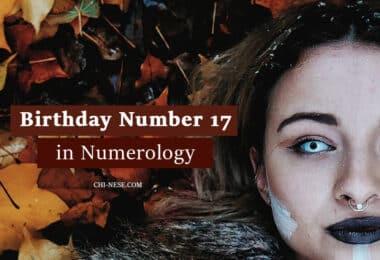 birthday number 17