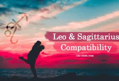 Leo and Sagittarius Compatibility