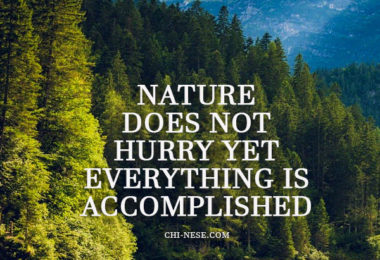 nature does not hurry yet everything is accomplished