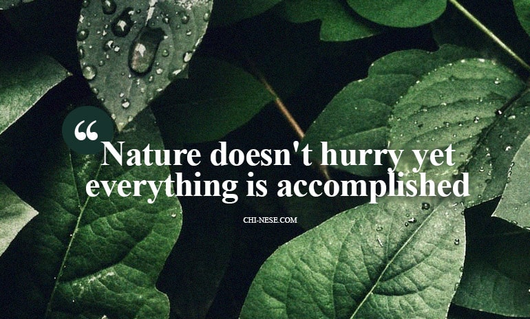 nature doesn't hurry yet everything is accomplished