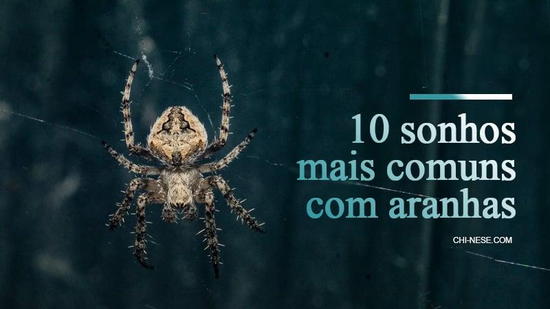 sonhos com aranhas