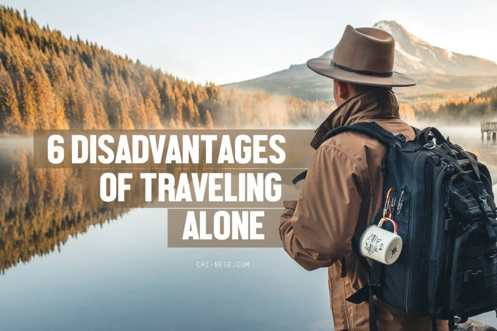 disadvantages of traveling alone
