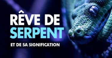 Rêve de serpent signification